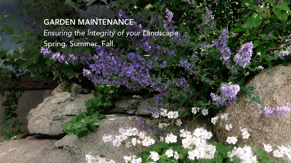 Garden Mainenance