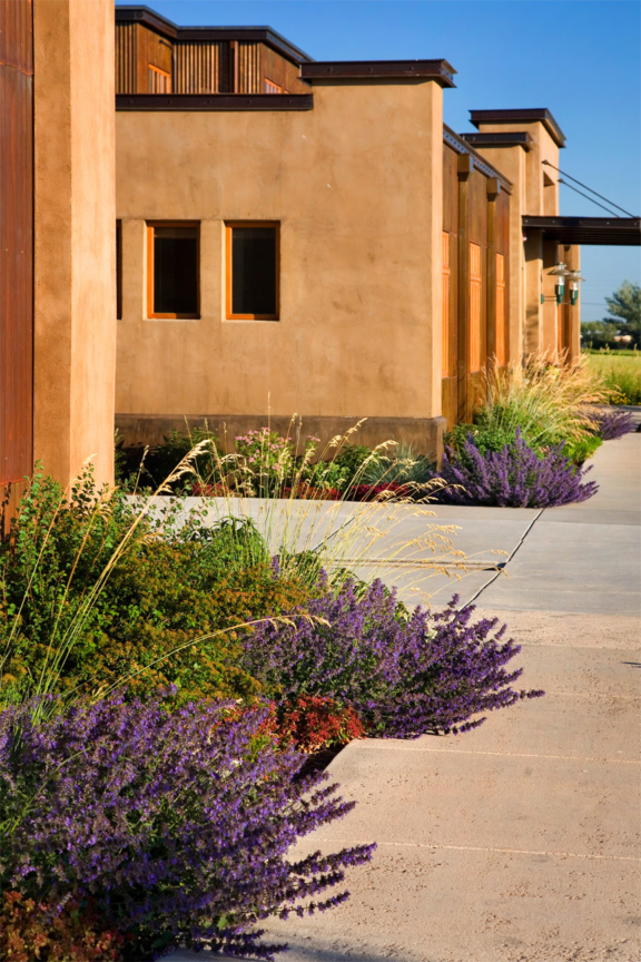 Photo of planting beds along sidewalks at Yellowstone Center