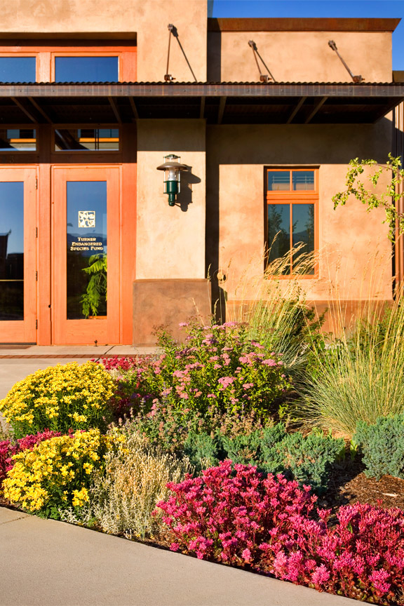 Photo of front door to Yellowstone Center with planting bed of Dragons Blood Sedum and Yellow Flax