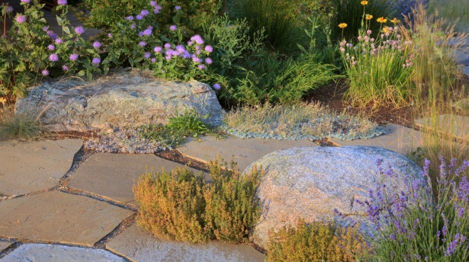 Photo of rock pathway
