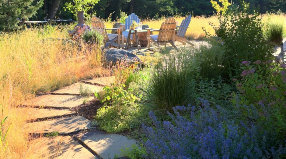 Photo of natural landscaping path and plantings